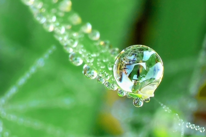 water-drop-photos-28