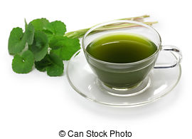 gotu-kola-drink-gotu-kola-asiatic-pennywort-centella-asiatica-ayurveda-herbal-drink-stock-photograph_csp36664497